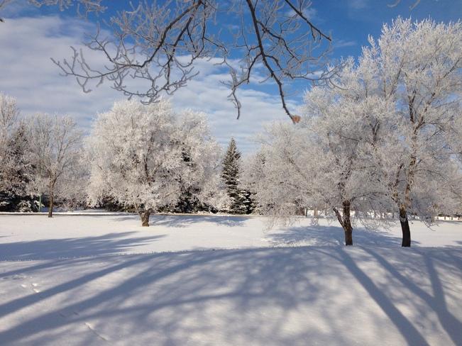 First Snow Saskatoon, Saskatchewan Canada