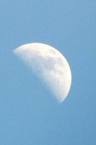 the moon Calgary, Alberta Canada