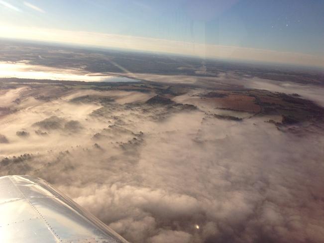 """Web of Fog"" Port Perry, Ontario Canada"
