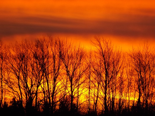 sunrise orange New Minas, Nova Scotia Canada