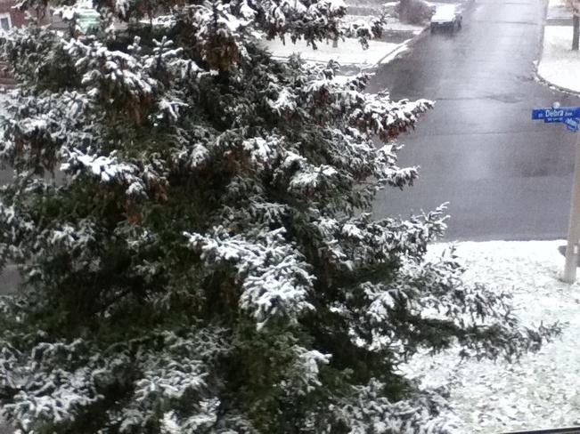 I Love snow! Ottawa, Ontario Canada