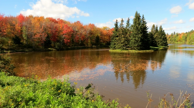 Fall Colours Moncton, New Brunswick Canada