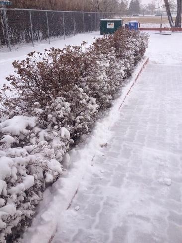 Winterpeg Winnipeg, Manitoba Canada