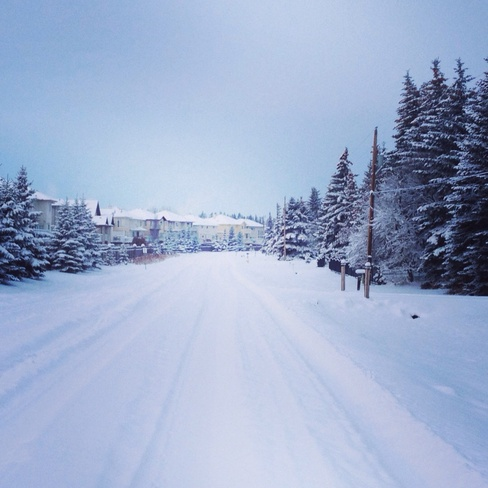 First snowfall Edmonton, Alberta Canada