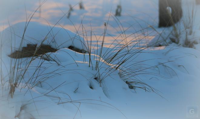 winter Winnipeg, Manitoba Canada