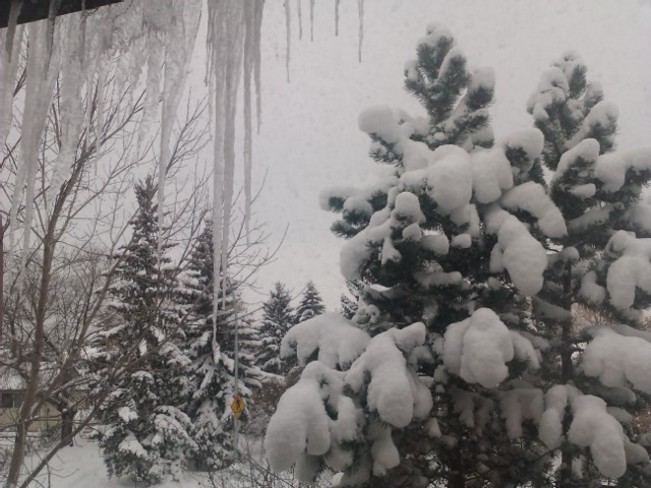 a winter blessing Edmonton, Alberta Canada
