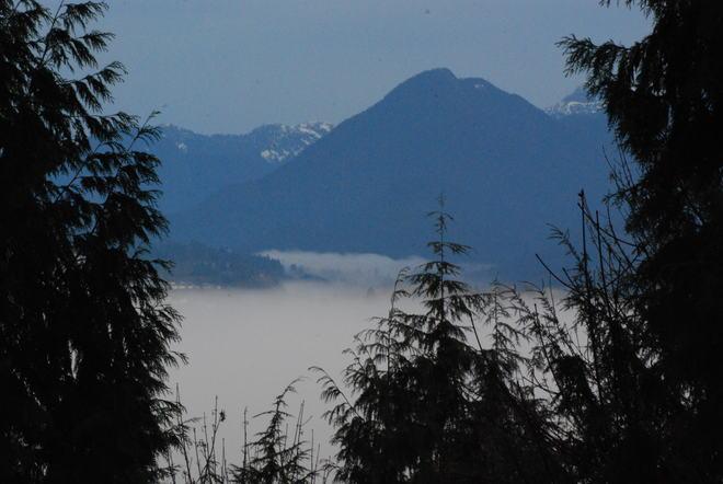 A river of fog Surrey, British Columbia Canada