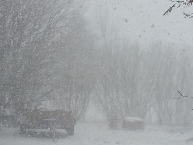 todays white out Amaranth, Ontario Canada