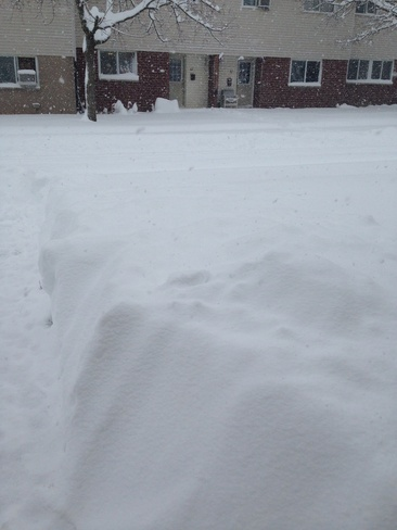 winter wonderland London, Ontario Canada