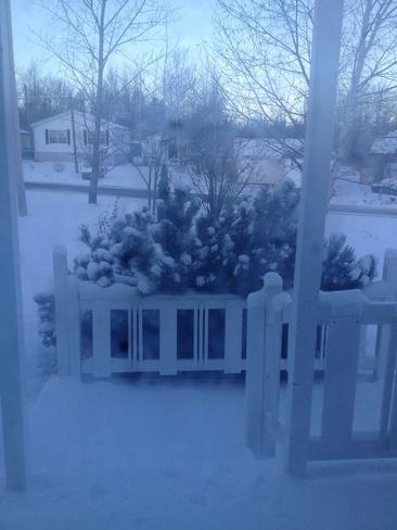 snow day Benton, Newfoundland and Labrador Canada