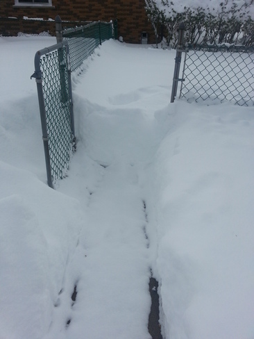 Snowy Day St. Thomas, Ontario Canada