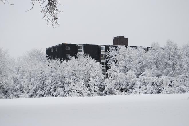 Winter Wonderland Kingston, Ontario Canada