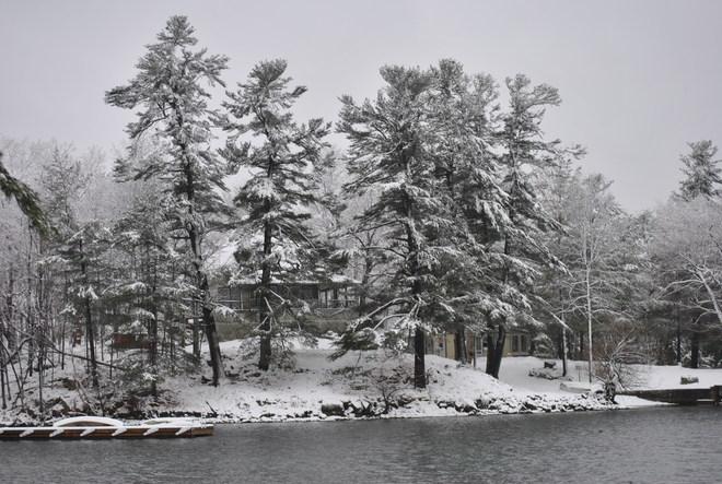 Just beautiful Darlingside, Ontario Canada
