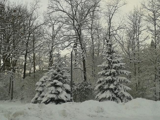 Beautiful Springbank Park London, Ontario Canada