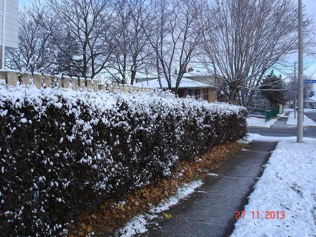 Advent of White Christmas Mississauga, Ontario Canada