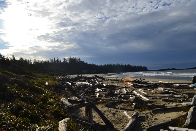 Beachcombing Tofino, British Columbia Canada