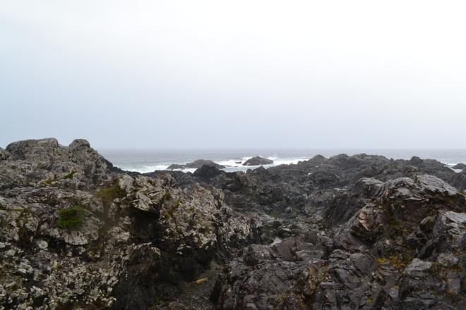 Overlooking the Rocks Ucluelet, British Columbia Canada