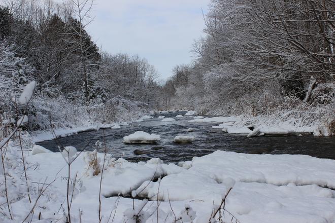 First Snow Fall Scarborough, Ontario Canada