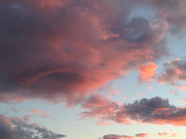 pink vortex Oak Bay, British Columbia Canada