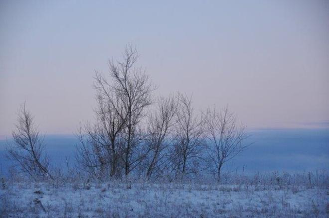 Misty blue morning Erin, Ontario Canada