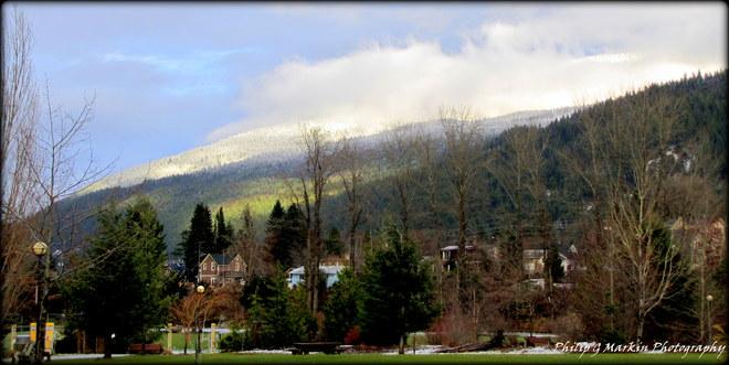 Bare Trees, Blue Sky Nelson, British Columbia Canada