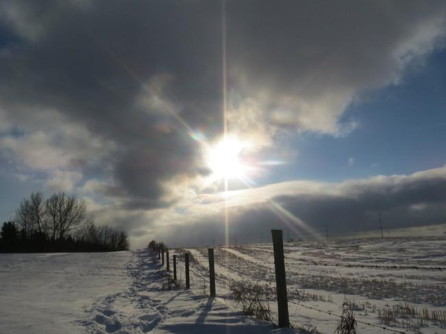 The sun through the sky Sherwood Park, Alberta Canada