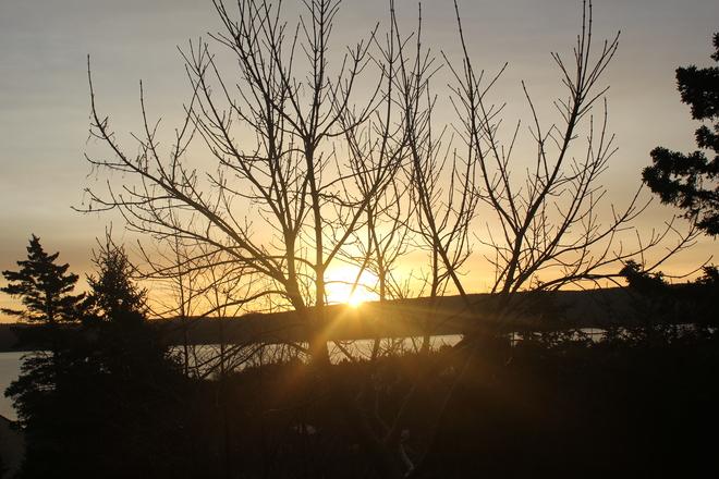 Sunrise Norman's Cove-Long Cove, Newfoundland and Labrador Canada