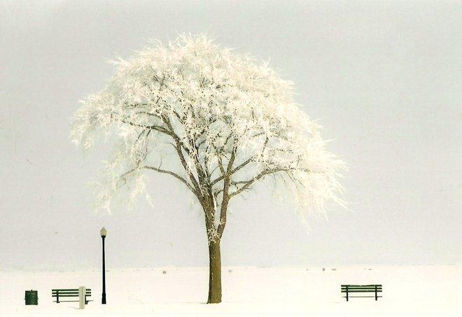 """Winter Park"" Escanaba, Michigan United States"