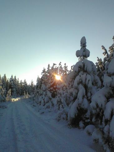 sun low temp lower Cranbrook, British Columbia Canada
