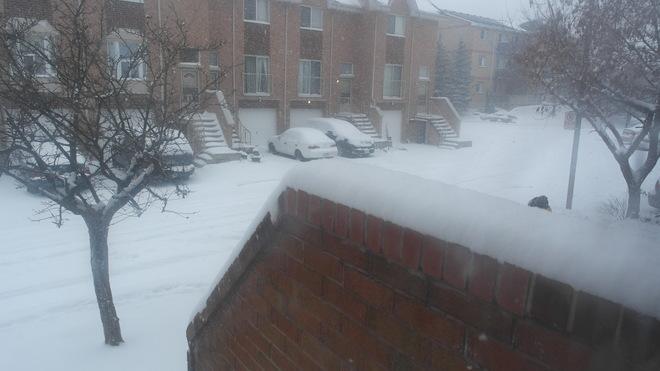 Snow Storm Mississauga, Ontario Canada