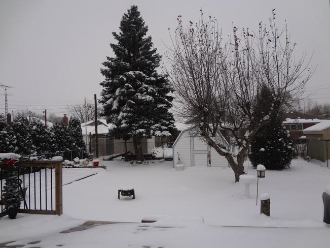 Beautiful snowy day Thorold, Ontario Canada