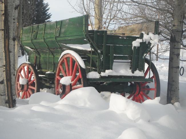 Season's Greetings Rosebud, Alberta Canada