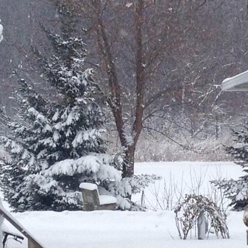 Happy Holidays from Wheatley Wheatley, Ontario Canada