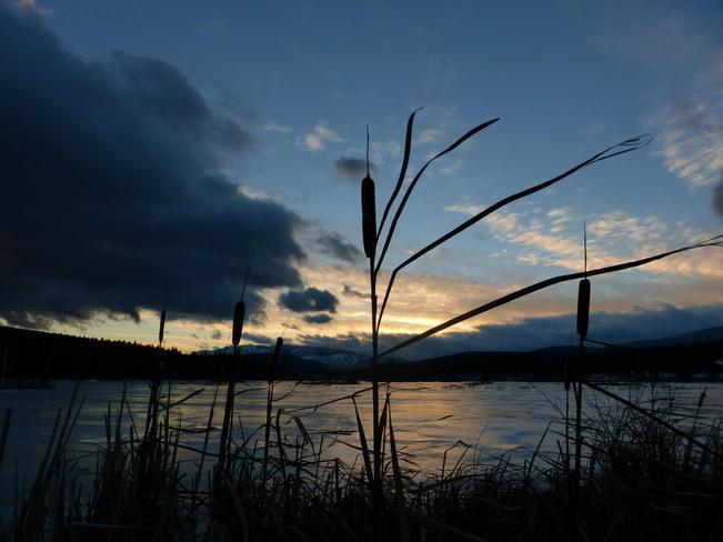 CATTAIL ANENOMETER Cranbrook, British Columbia Canada