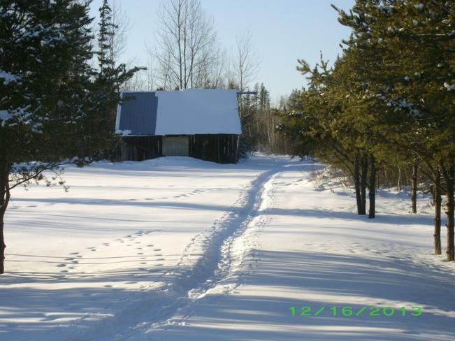 Snowshoe tracks Kenabeek, Ontario Canada
