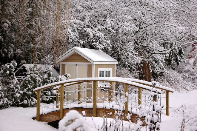 Winter Wonderland Cobourg, Ontario Canada