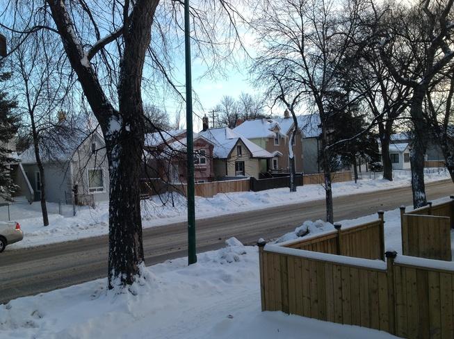 Getting very cold -27 windchill! Winnipeg, Manitoba Canada