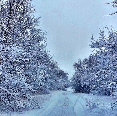 Fall ❄️ Charlottetown, Prince Edward Island Canada