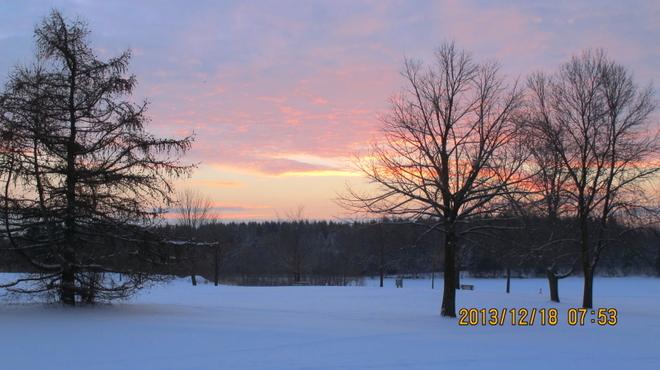 Morning-1 Markham, Ontario Canada
