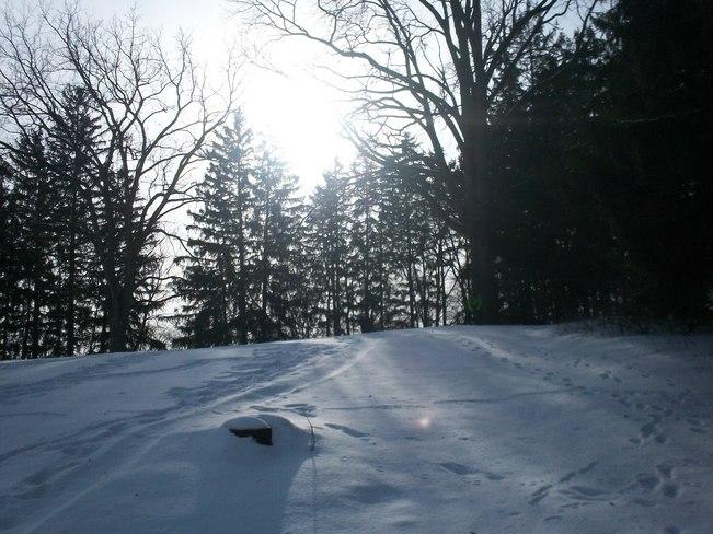 Sunny Winter Day Kitchener, Ontario Canada