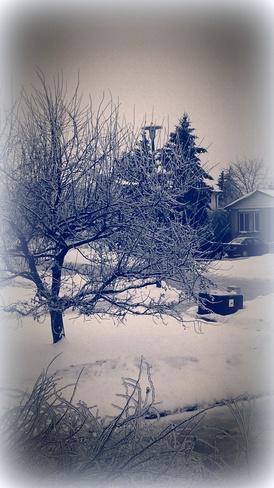 So Pretty Kingston, Ontario Canada