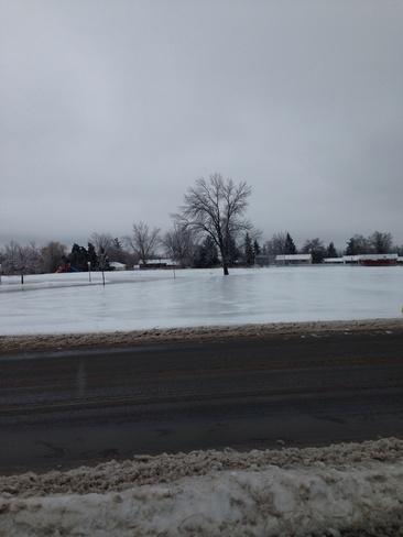 ice Napanee, Ontario Canada