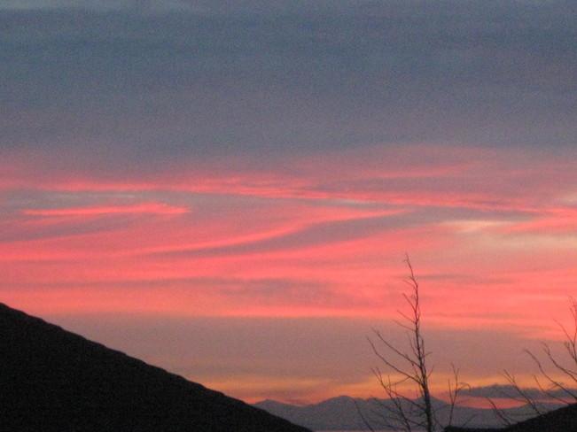 pink Surrey, British Columbia Canada
