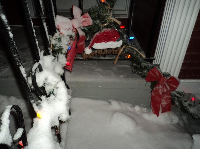 Fresh Fallen Snow Carbonear, Newfoundland and Labrador Canada