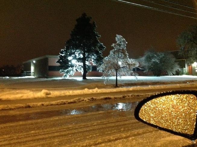 Crystal Trees With Lights 2 Hamilton, Ontario Canada