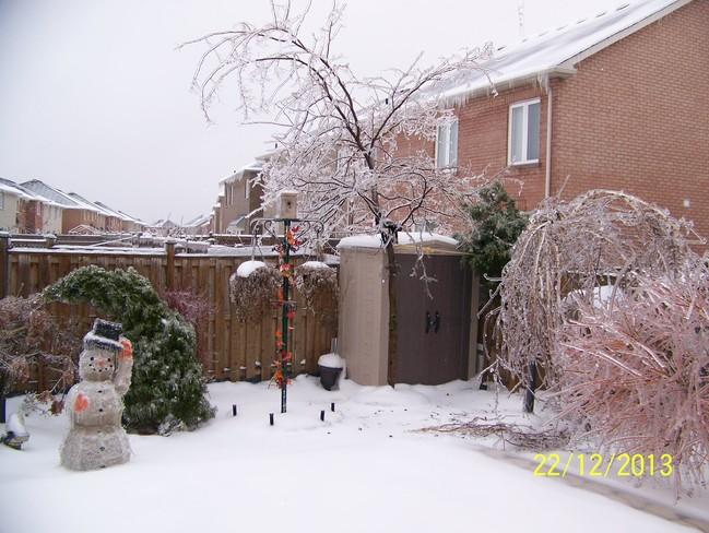 Snowman Brampton, Ontario Canada