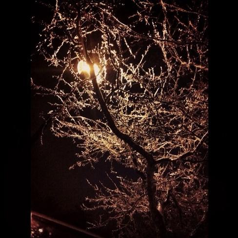 Lamp in freezing rain Bowmanville, Ontario Canada