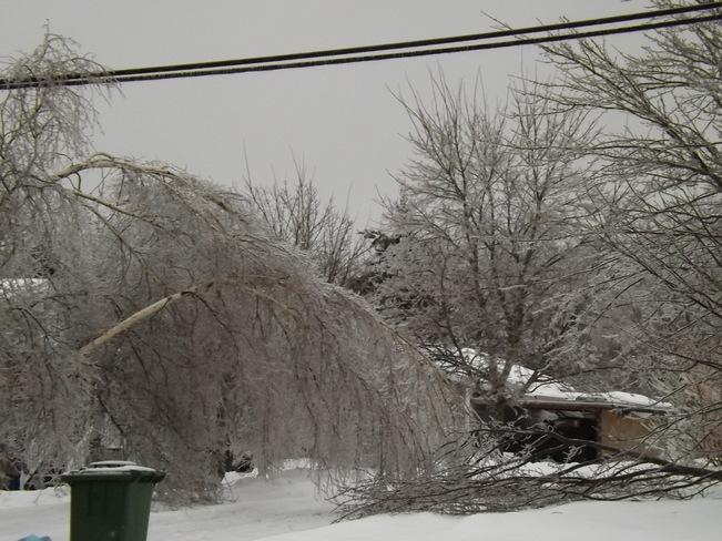 ice storm the final chapter 7 New Minas, Nova Scotia Canada