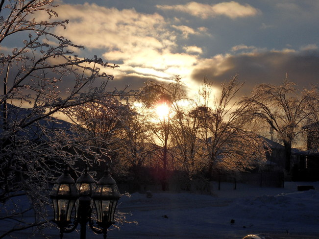 Beautiful Ice Storm Kingston, Ontario Canada