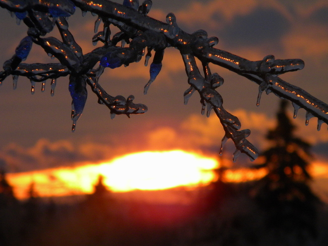 after ice strom Hampton, New Brunswick Canada